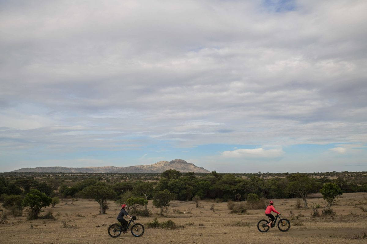people riding bikes in a savanna