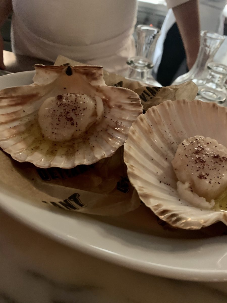 seasoned scallops in shells on a plate
