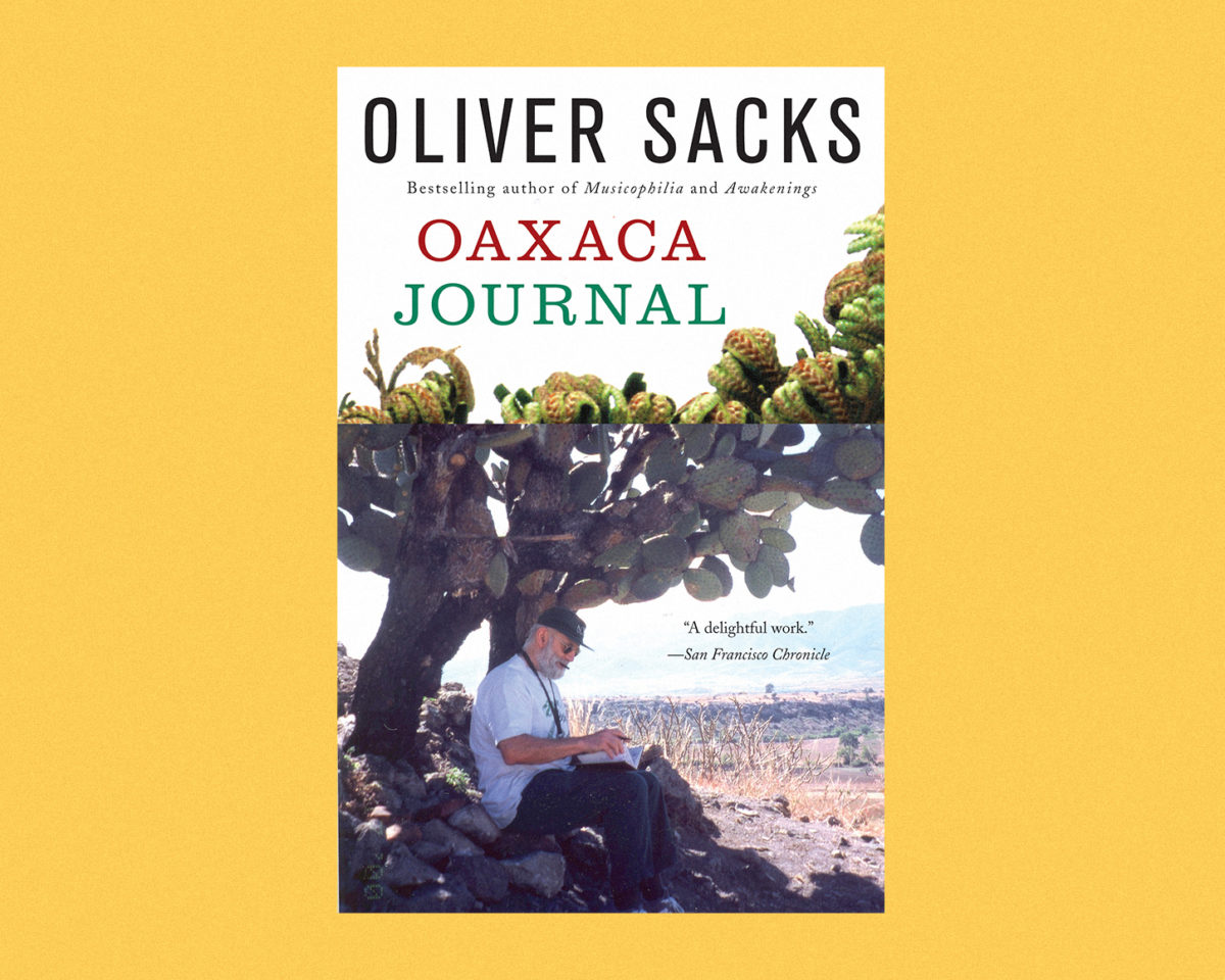 oaxaca journal book cover