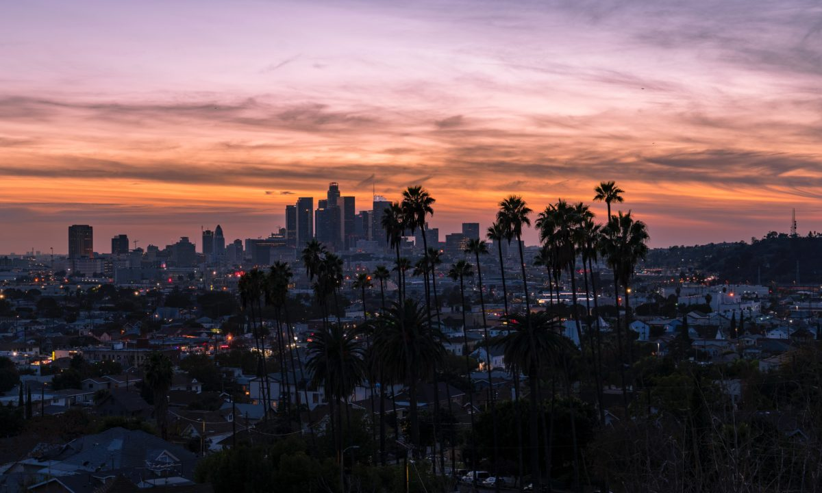 a large city with skyscrapers and palm trees at sunset
