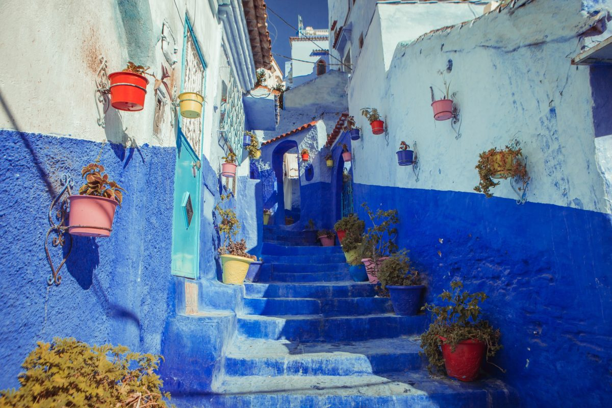 plant-lined stairs leading up the walkway of an all-blue cities