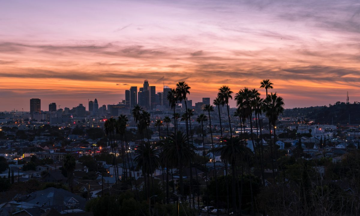 palm trees above a large city at sunset