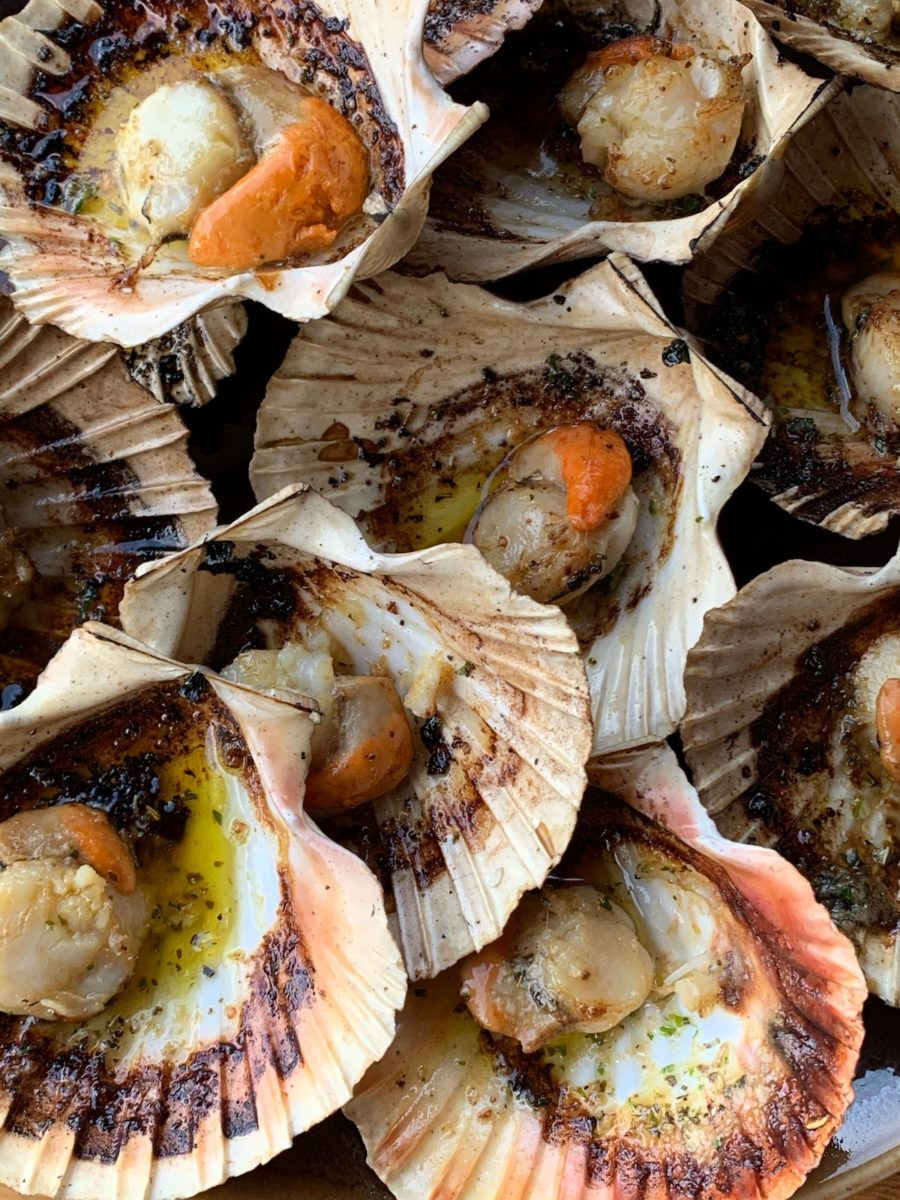 closeup of grilled scallops on the half shell