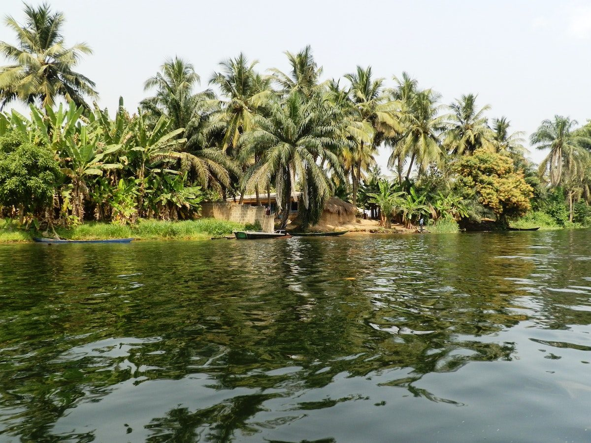View from the river of a small boating village with palm trees