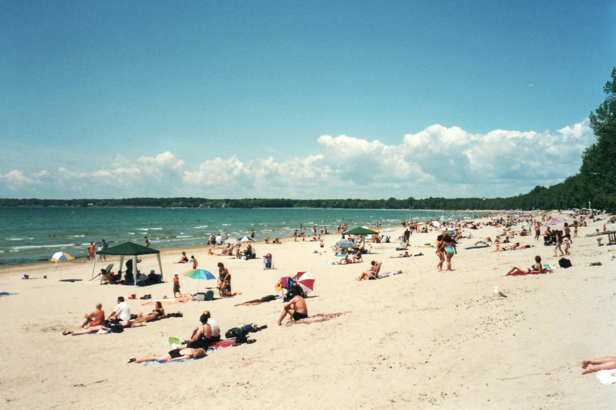 a beach with beachgoers