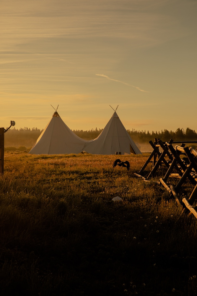 two canvas tents at sunrise in a pasture