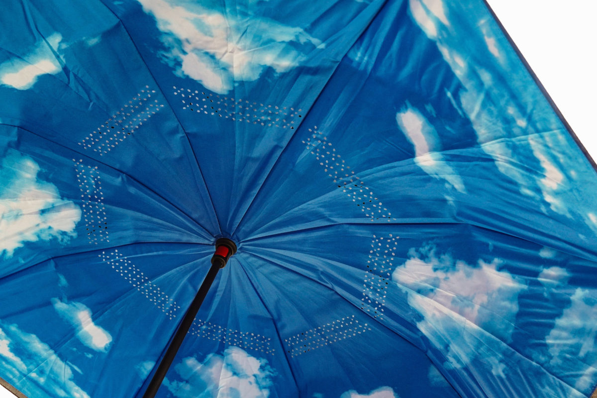 an open umbrella