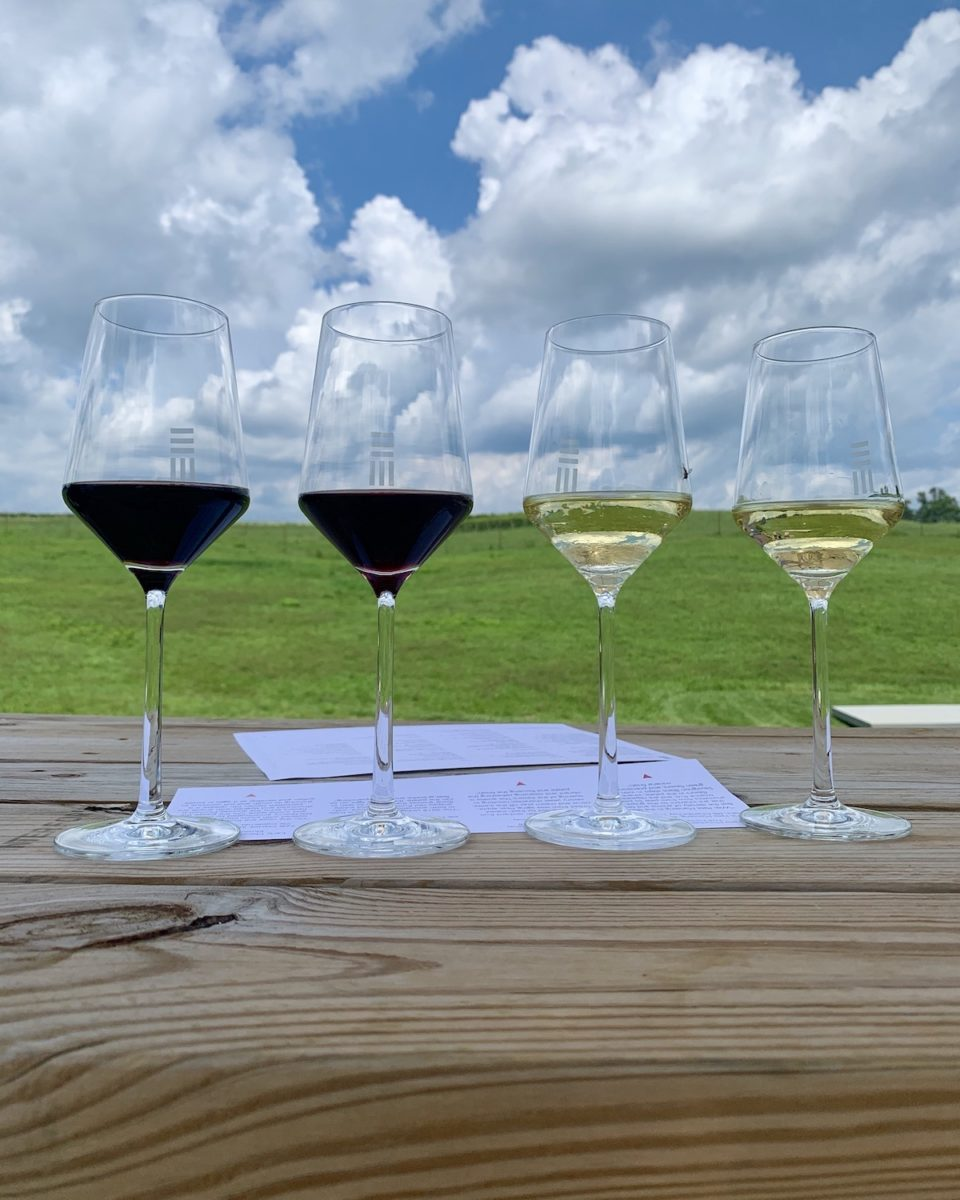 two glasses of red wine with two glasses of white wine overlooking green pasture