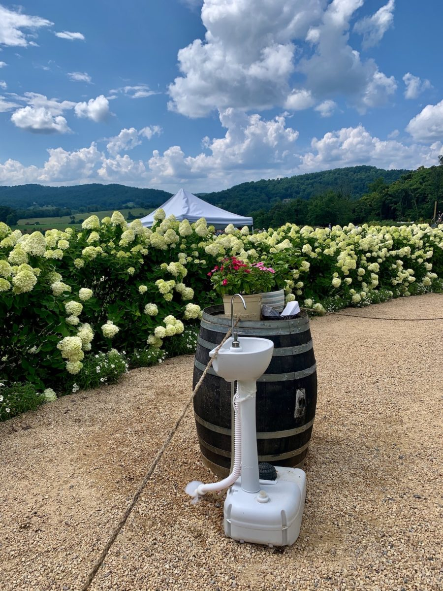 hand washing station near hydrangeas at the entrance of a vineyard