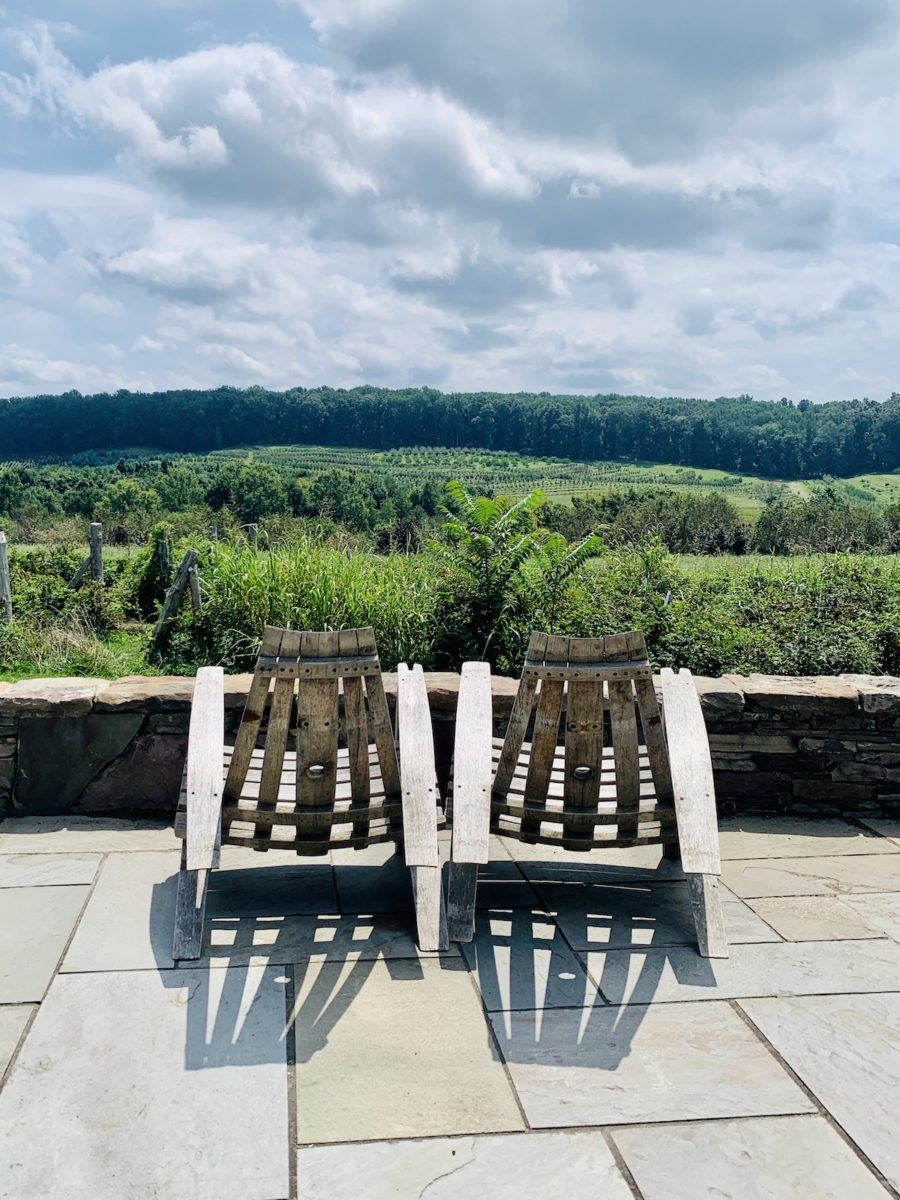 adirondack chairs overlooking vast tree nursery